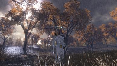 [가을감성]태풍오는 날의 가을풍경