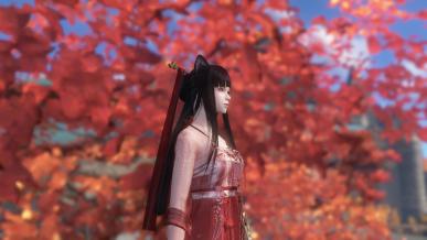 [가을감성] 단풍구경
