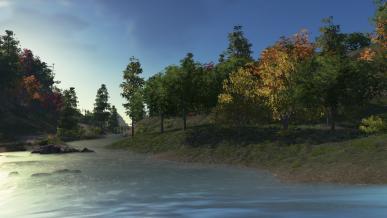 [가을감성] 가을은 나무와 함께