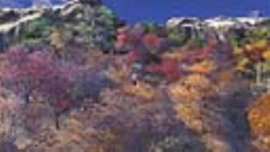 [명소] 겨울과 가을 그 사이