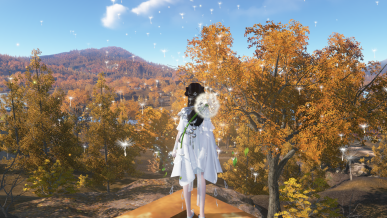 [가을감성] 가을날~ 단풍이 물든 산을 바라보며