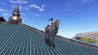 말을 타고 지붕위로