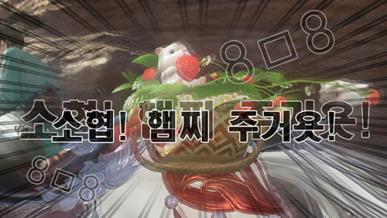 [경마] 햄찌 귀여워
