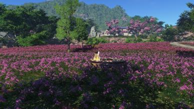 [천일] 꽃밭