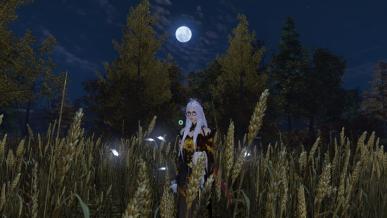 [가을감성] 보름달이 뜬 가을밤