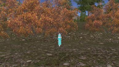 [가을감성] 아! 시몬 너는 들리냐! 가을이 오는 소리를...