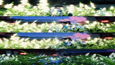 [새봄] 호접지몽